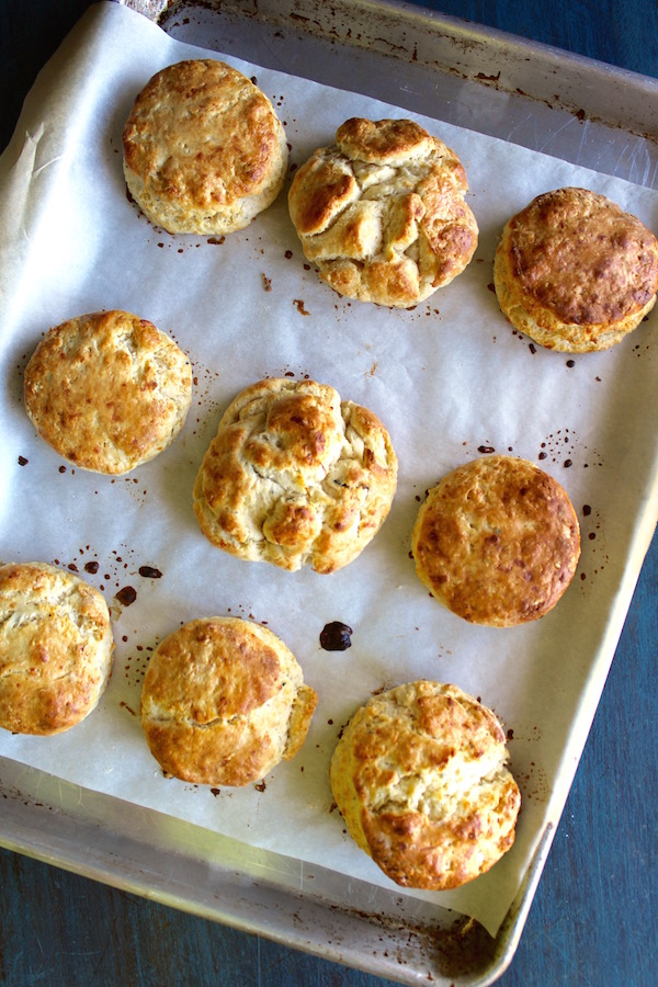 chicken fat biscuits baked sheetpan