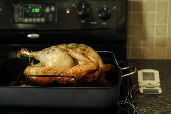 Duck fat roasted turkey recipe