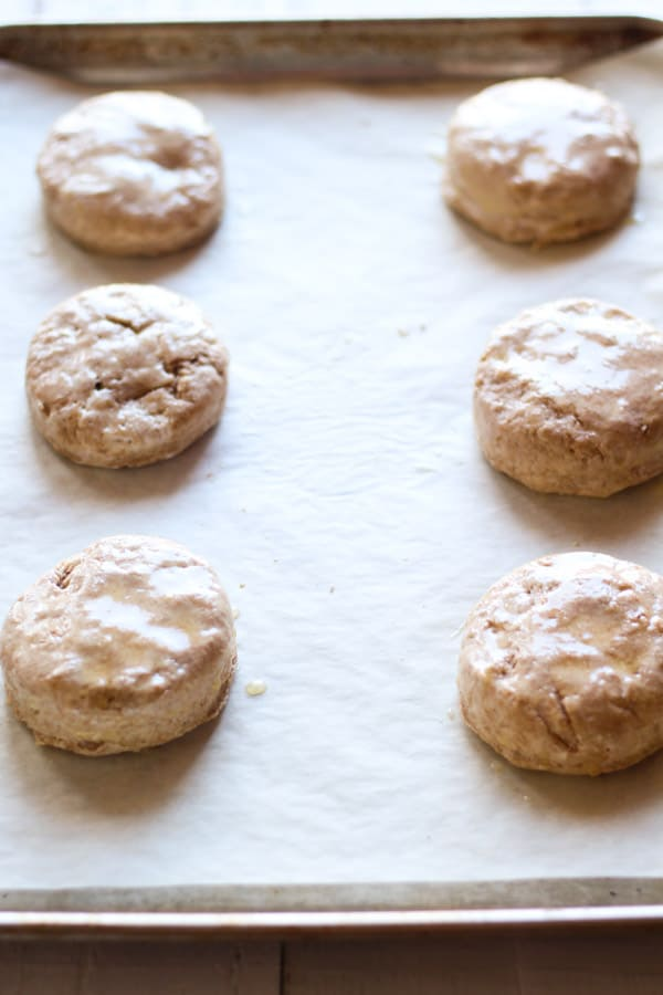 Sourdough spelt biscuits brushed with buttermilk