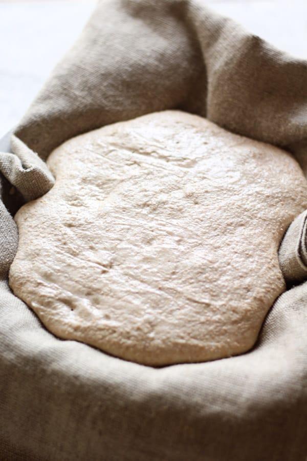 Sourdough honey splet bread dough 2nd fermentation