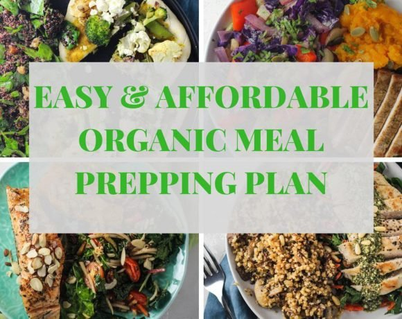 easy organic meal prepping with green chef