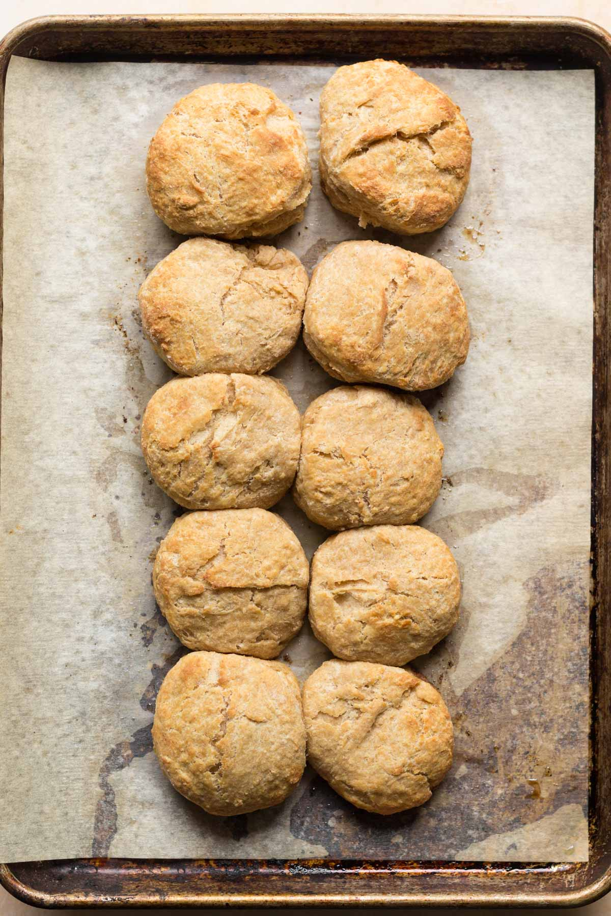 Sourdough discard biscuits baked on sheet pan