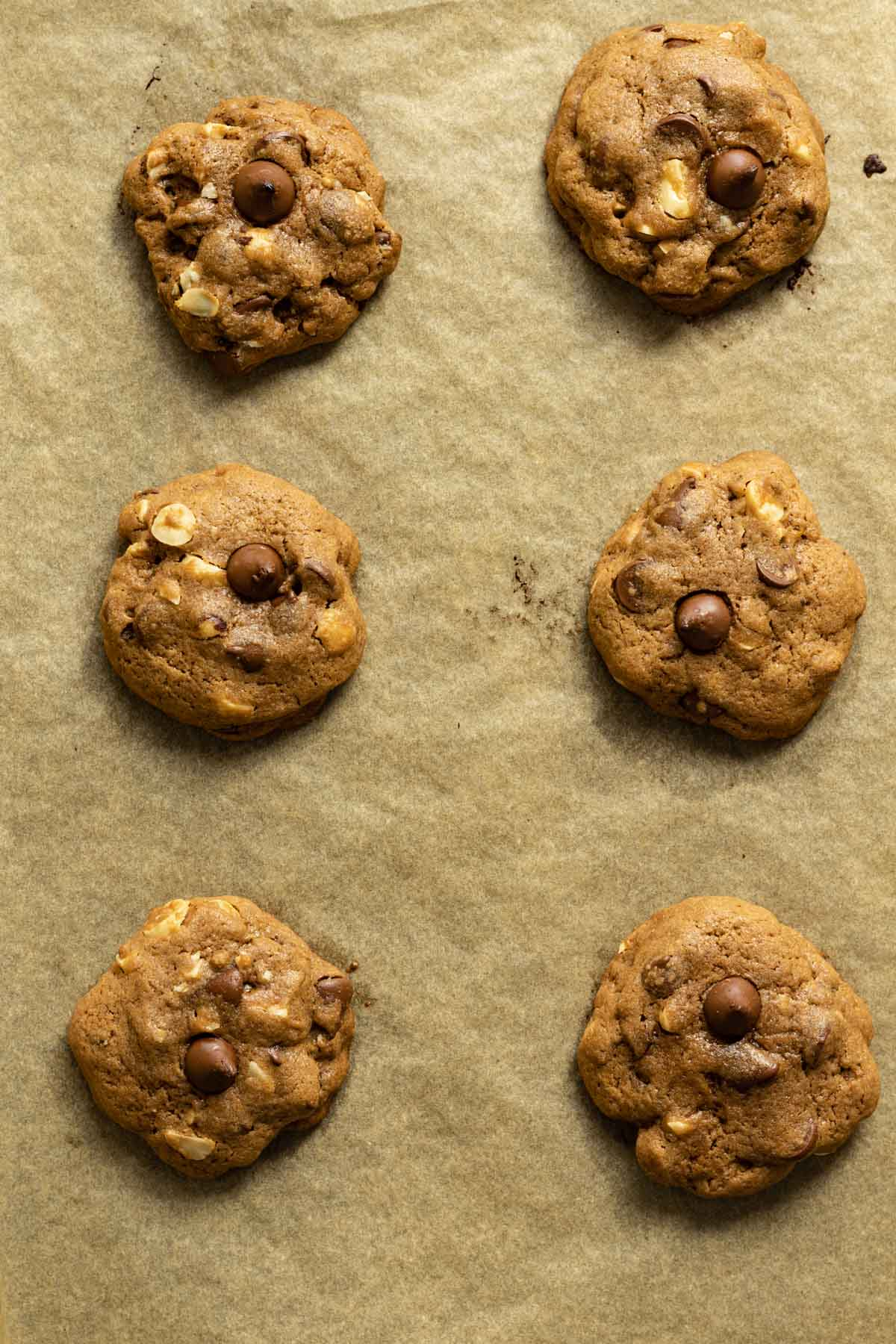 Baked double chocolate chip hazelnut cookies on parchment paper