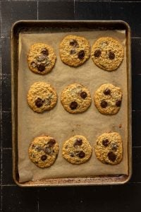 oatmeal chocolate chip cookies on a sheet pan